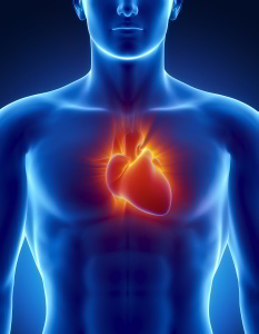 servicios cardiologia