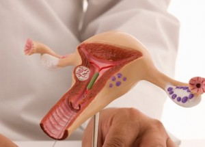 ginecologia dr christian adan